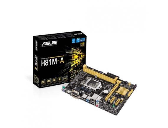 Asus Motherboard H81M-A LGA1150